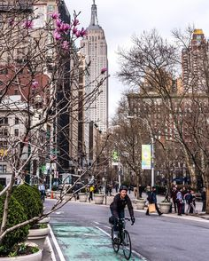 A bit of Spring color in Manhattan. View of Empire State Building from Madison Square Park. Happy Easter everyone! ===================================== #NYC #NewYork #NBC4NY #Manhattan #NewYorkCity #newyorkphoto #nycprimeshot #icapture_nyc #usaprimeshot #phototag_street #what_i_saw_in_nyc #ig_mood #ig_nycity #ig_americas #ig_all_americas #ig_northamerica #ig_unitedstates #myCity_Life #loves_nyc #inspiring_photography_admired #rsa_streetview #NikonNoFilter #wildnewyork #igsccities #topnewy