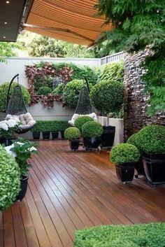 Small Courtyard Gardens, Small Courtyards, Small Backyard Gardens, Small Backyard Design, Backyard Patio Designs, Small Backyard Landscaping, Backyard Ideas, Backyard Pools, Balcony Garden