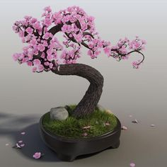 """In Japanese: """"Misho"""" - Growing Bonsai from tree seeds. Bonsai Seeds, Tree Seeds, Large Shower Heads, Japan Illustration, 3d Max, Clay Flowers, Tree Cakes, Environmental Art, Green Plants"""