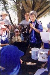 Tolga Bat Hospital - Jenny Maclean our president with a school group  #ecotourism #Queensland #Australia