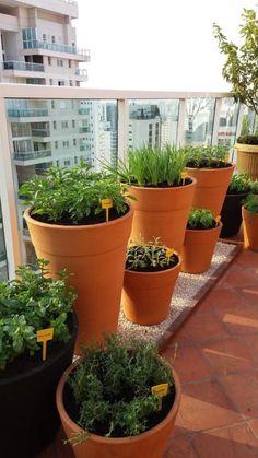 Organic Gardening Information Garden Hoe, Terrace Garden, Home And Garden, Garden Crafts, Garden Projects, Apartment Decorating On A Budget, Balcony Plants, Bottle Garden, Vegetable Garden Design