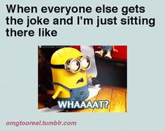 We have 17 minion quotes for all those who enjoy humor from time to time. Minions embody everything that is cool. So you will def love these minion quotes. Check them out! Funny Shit, The Funny, Funny Jokes, Funny Stuff, Funny Things, Random Stuff, Random Humor, Funny Cartoons, Funny Moments