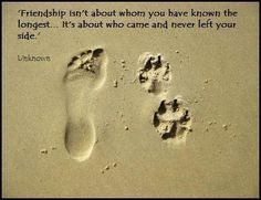 Friendship.....about those who came and never left your side