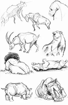 I pinned this sketch because I used it as a resource for my sketches and I used some ideas from it. I used the bear Ideas in Particular for one of my creatures.