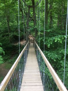 5 Exciting Swinging Bridge Trails In Kentucky Vacation Places, Vacation Spots, Places To Travel, Vacations, Travel Destinations, Travel Stuff, Italy Vacation, Vacation Ideas, Weekend Trips