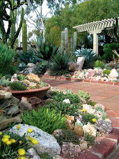 Ein Garten mit Wüsten-Look benätigt exotische Pflanzen