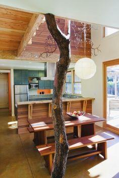 tree-house house]