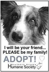 ADOPT, the mission, the message  www.sohumane.org