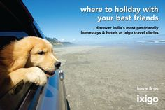 Pet friendly accommodations #india #pets #travel
