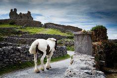 ڰۣ✿ Inisheer, Aran Islands, Ireland.