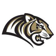 Fantasy Football Logo Iron On Patches Panther Logo, Tiger Logo, Sports Team Logos, Sports Art, Logo Design Inspiration, Icon Design, Fantasy Football Logos, Diamond Art, Animal Logo