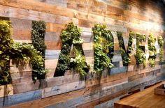 beautiful green wall. | Green Walls | Pinterest | Logos, Living ...
