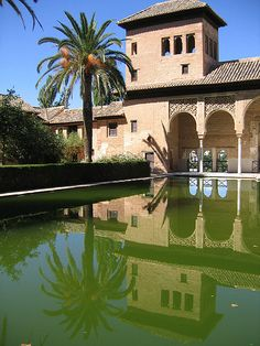 Pool at Alhambra palace