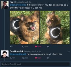 I'm pretty sure the phandom will go crazy if the dog really does replaces Dan though
