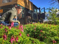 #defender130 #lrd #landrover #landroverdefender by gisberra #defender130 #lrd #landrover #landroverdefender