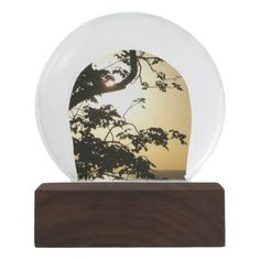 Sunset Through Trees II Tropical Photography Snow Globe - photography picture cyo special diy