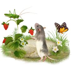 TUBES SOURIS Rats, Gloucester, Křeček, Kostýmy, Počítačová Myš, Animaux, Texty, Oči