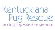 Kentuckiana Pug Rescue