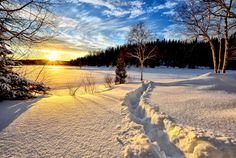 Here are the 6 best places in the world to watch the sunrise. At those places the sunrise to meet your gaze atop the world. Winter Landscape, Landscape Photos, Landscape Photography, Sunset Landscape, Winter Photography, Photography Tips, Travel Photography, Nikon D7000, Foto Software
