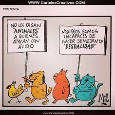 Protesta No digan animales a quienes atacan con acido NOSOTROS SOMOS INCAPACES DE HACER SEMEJANTE BESTIALIDAD