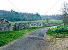stone wall in countryside - A stone wall runs along the road in the Cotswolds.