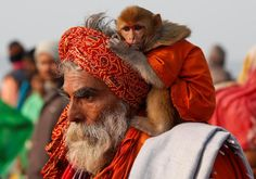 A Sadhu carries his pet monkey at the festival of Makar Sankranti