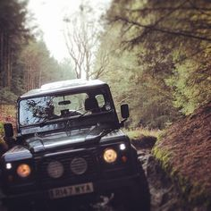 Them lights. Forests are the best. #defenderlove#defender#defender90#offroading#offroad#4x4#forest#landy#landrover#fun #Padgram