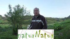 Suscribete a nuestro nuevo canal (naturnatur.es)
