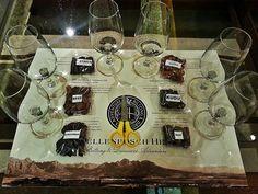 Stellenbosch Hills with biltong tasting