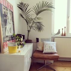 Neue Homestory:Zu Besuch bei mai985 in Darmstadt #homestory #wohnzimmer #livingroom #ledersessel #leatherchair #altbau #kissen #pillow #pilea #spint