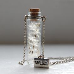 This would make a great birthday present... just open it and make a wish while the dandelion seeds fly away