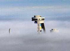 Kış sporları merkezi Erzurum'da, sisli bir güne kafa tutan atlama kuleleri