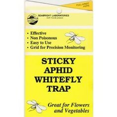 """Yellow Sticky Aphid Whitefly Trap Pack of 15 by Seabright. $13.45. Non-Toxic. Highly Effective. Great for Flower and Vegetables. Easy to Use. Easy-to-open yellow 4""""x7"""" trap reverse folds to expose 4""""x14"""" stickysurface with grid for precision monitoring purposes. Approximately 30 square inch adhesive area.  Non-poisonous and weatherproof. Punched with hole and twist-tie provided to easily hang trap. Easy to handle and count insects without getting sticky. These yellow..."""