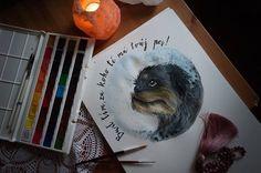 Akvarell griffon