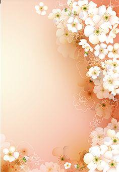 Pastel Pink Wallpaper, Flowery Wallpaper, Framed Wallpaper, Flower Background Wallpaper, Flower Phone Wallpaper, Cute Patterns Wallpaper, Flower Backgrounds, Studio Background Images, Background Images Wallpapers