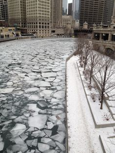 The Chicago River in the winter, Chicago, Illinois, USA Chicago Loop, Chicago River, Chicago City, Chicago Illinois, Germany And Italy, Willis Tower, Travelling, The Neighbourhood, Beautiful Places
