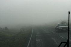 https://flic.kr/p/qg28kG | 마치 영화에서 본 듯한 안개 : The fog seemed like in the movies | 이런 안개를 지나서 가는 길은 묘하게 느낌이 달랐습니다.