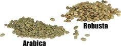 Robusta: 1.8 - 4.0% caffeine,  Arabica: 0.9-1.4% caffeine
