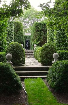 Evergreens, pruning, path, turf, stone, walls, floors, foyers, hallway, Carolina Irving  #garden #carolinairving #summer