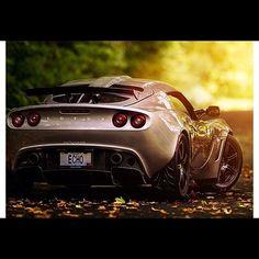 Luscious Lotus: Sunset Drive