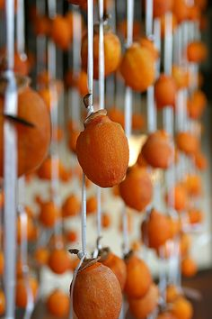 干し柿 dried persimmons. Hoshigaki are persimmons that are peeled and dried whole over a period of several weeks through a combination of hanging and delicate hand-massaging, until the sugars contained in the fruit form a delicate surface with a dusting that looks like frost. Unlike sliced dried fruit, which tend to be brittle and leathery, hoshigaki are succulently tender and moist, with concentrated persimmon flavor.