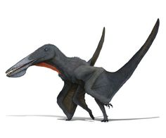 It was among the most surprising of all pterosaurs from China's Early Cretaceous rocks, named after the dragon-like flying aliens in the movie Avatar. Reptiles, Dinosaur Art, Dinosaur Fossils, Alien Creatures, Prehistoric Creatures, Animals Images, Animals And Pets, Jurassic Park World, Alien Art