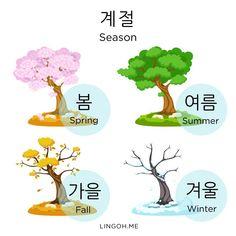 Korean vocab about Seasons