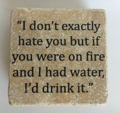 I Don't Exactly Hate You But If You Were On Fire And I Had Water, I'd Drink It Funny Coasters - Set of 4 - Natural Stone