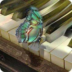 Hay música que no sólo llega ha nuestros oídos, algunas los atraviesan y logran besar el alma...Ella el corazón de la vida, por ella habla el amor; sin ella no hay bien posible y con ella todo es más hermoso...