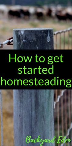 How to get started Homesteading | Homesteading for beginners | Homesteading Ideas | Self Sufficient Homesteading | Homesteading Skills | Homesteading Tips | Backyard Homesteading | Backyard-Eden.com