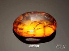 Amber - short video. GIA (120414)