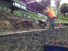 Using the Alpine Stump Grinder on a retaining wall. Stump Grinder, Grinding, Wall, Life, Ribbons, Walls