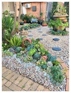 Succulent Rock Garden, Succulent Landscaping, Succulent Gardening, Landscaping With Rocks, Front Yard Landscaping, Succulents Garden, Landscaping Ideas, Backyard Ideas, Vegetable Gardening