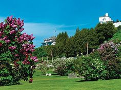 To date, my most favorite place in the world that I've been. Mackinac Island.